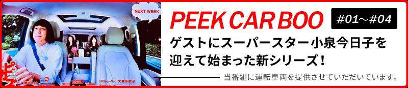 PEEK CAR BOO